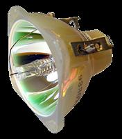 ACCO NOBO S18E Lamppu ilman moduulia